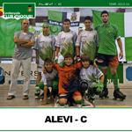 alevi-c-small