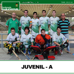 juvenil-a-small