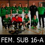 FEM16A-mini