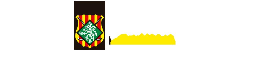 SECCIÓ D'HOQUEI PATINS DEL CERDANYOLA CH