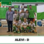 alevi-d-small
